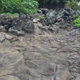 Shotcrete Stabilization Job in Honolulu